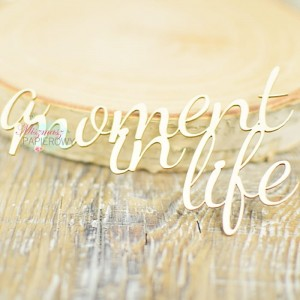 "Napis "" a moment in life"" 2"